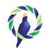 鸽羽林安卓版 v3.1.5.20200420
