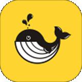 口袋鲸选安卓版 v3.0.15