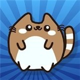果冻猫安卓版 v1.2