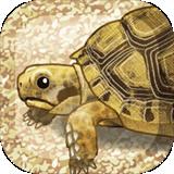 治愈的龟养成安卓版 v1.1