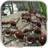 蚂蚁模拟安卓版 v2.5.2