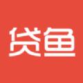 小贷鱼借款APP安卓版下载1.0
