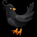乌鸦聚合直播APP手机版下载1.1.1