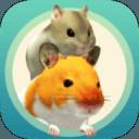 我的仓鼠5.0.0