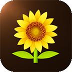 向日葵理财师安卓版 v1.0.0