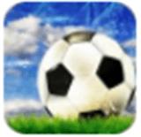 传奇冠军足球安卓版 v0.5.0