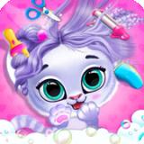 宠物化妆世界安卓版 v1.1