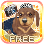 家有小狗安卓版 v3.9.7