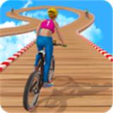 疯狂特技骑手安卓版 v1.3